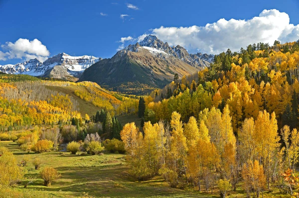 Northern Colorado Referral Directory